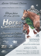Imagem capa do leilão Virtual On Line - Horse Selection
