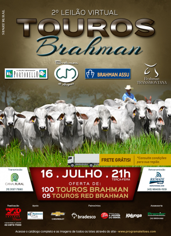 2° Leilão Virtual Touros Brahman