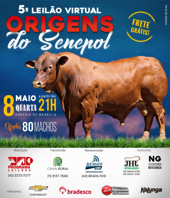 5° Virtual Origens do Senepol
