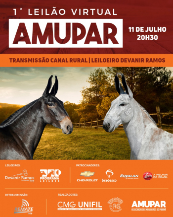 1° Virtual AMUPAR