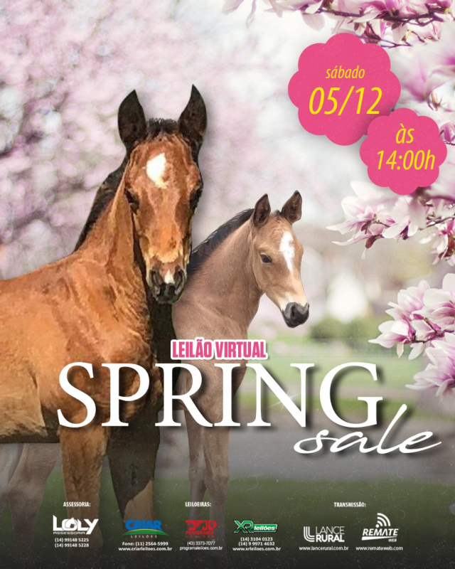 Leilão Virtual Spring Sale