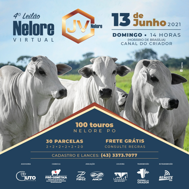 4° Leilão Nelore JV Virtual